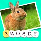 3 Words - find the three secret quiz words in one picture icon