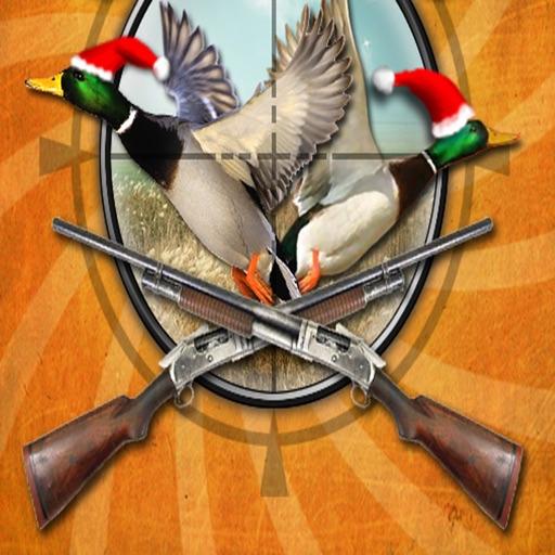 Bird Killers