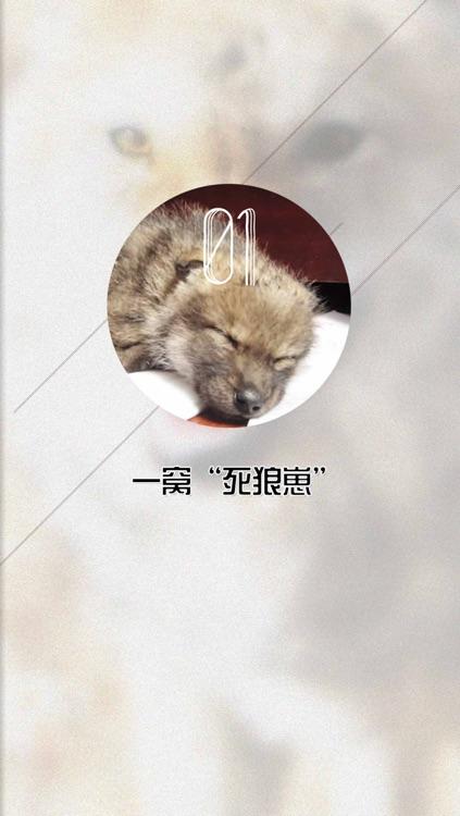 重返狼群 screenshot-4