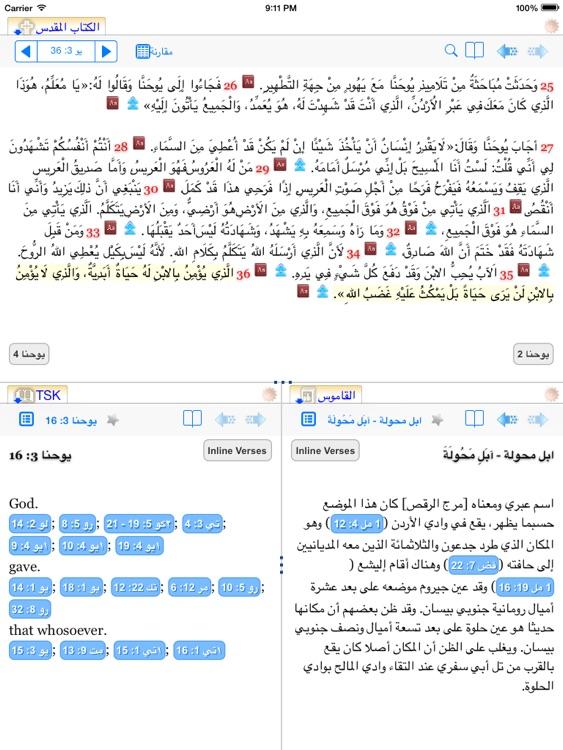 Injeel HD - Offline Arabic Bible studying tool screenshot-4