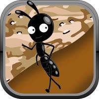 Codes for Ant Farm Escape to Bug Village Hack