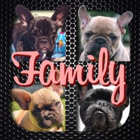 Codes for Frenchie Family - French Bulldog Pack Builder Hack