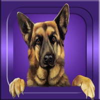Codes for Guess it - Dog Breeds Hack