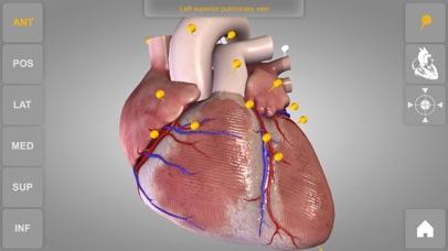 心臓解剖 Heart 3D Atlas of Anatomyのおすすめ画像4
