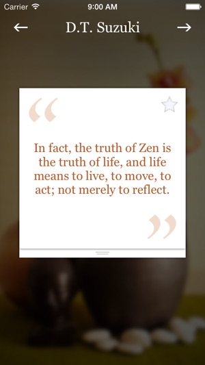 Pocket Zen On The App Store