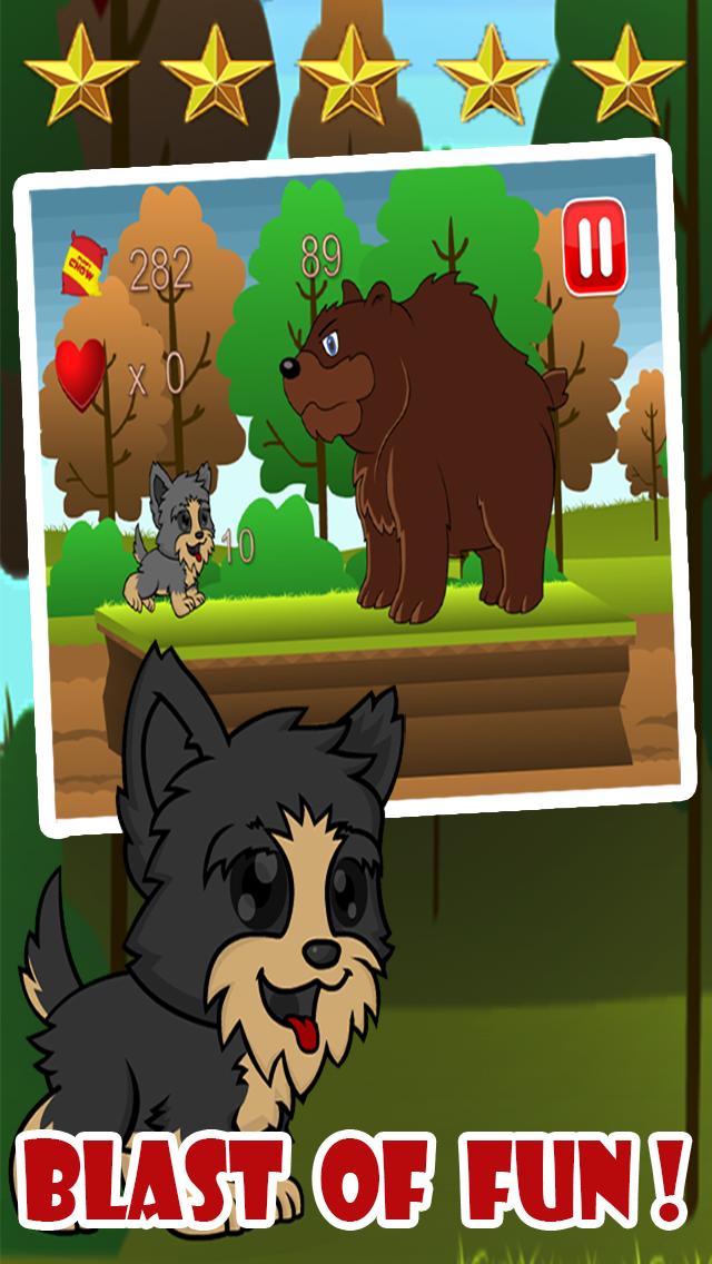 Yorkie Pup Fun Run screenshot one