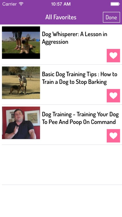 Dog Training Guide - Ultimate Video Guide
