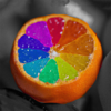 Color Recolor Effects - Photo Splash FX and Paint Highlights into Black & White Pictures