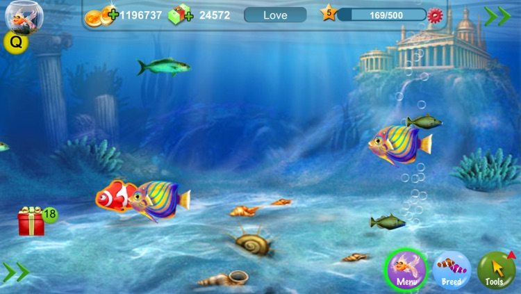 Dream Fish screenshot-3