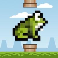 Codes for Flying Frog Arcade Hack