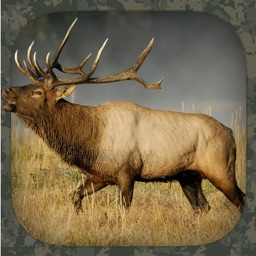 Elk Hunting Calls Apple Watch App