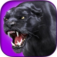 Activities of Black Panther Hunter - Wild Sniper 3D Assassin