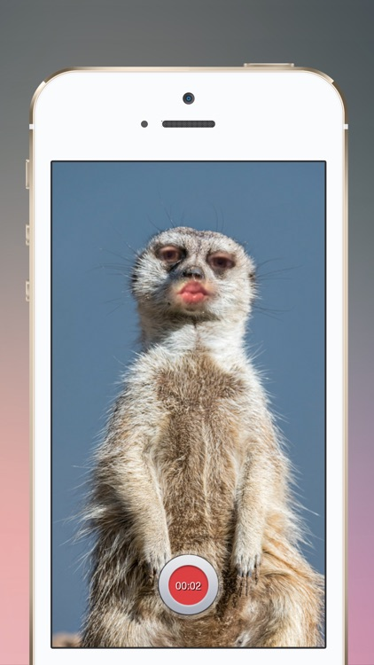 Lipster: Mesh Your Face screenshot-3