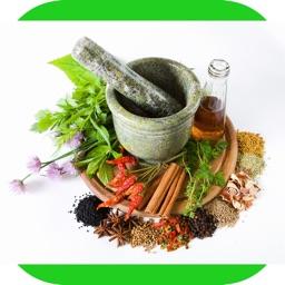 Medicinal Herbal Plants & Cures Herbs