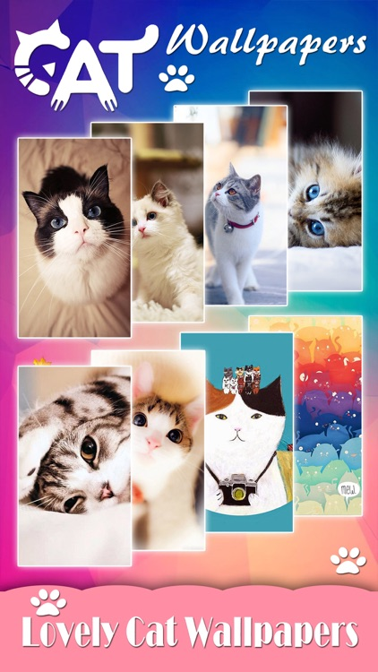 Cat Wallpapers Backgrounds Pro Home Screen Maker With Themes Of