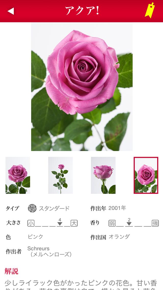 切り花 バラ図鑑 1000のおすすめ画像2