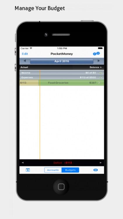 PocketMoney - checkbook, budgets, expenses screenshot-4