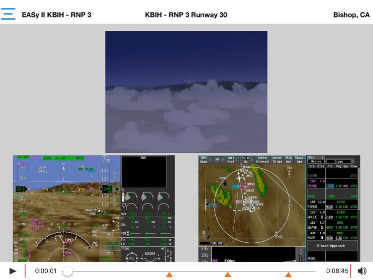 Synthetic Vision Demonstrator App screenshot-1