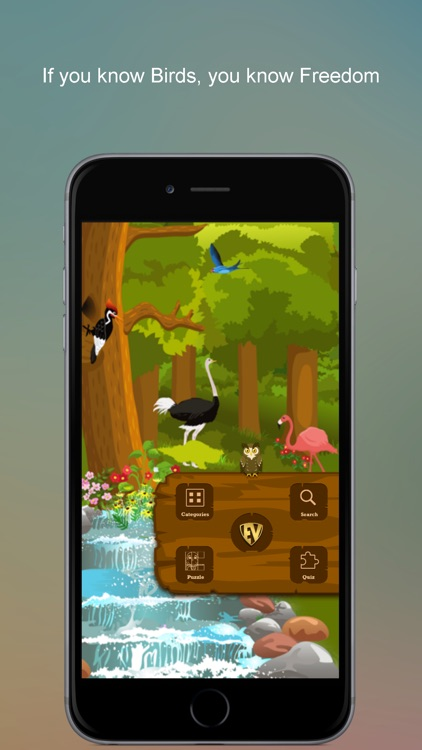 Non Perching Birds PRO: SMART guide to Non Passerines with Games and Puzzles