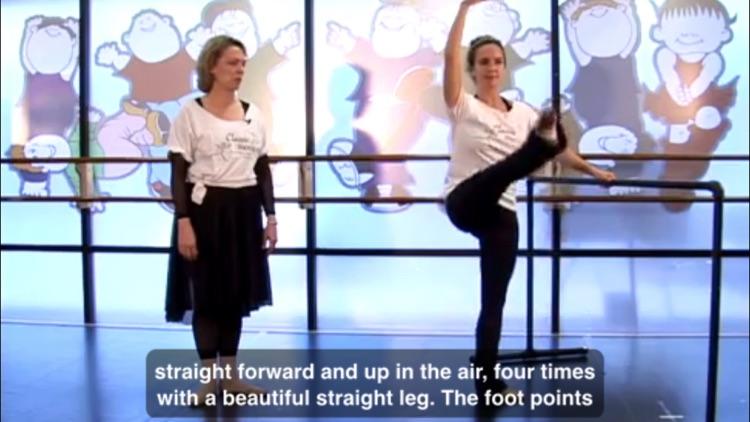 Teach Yourself Ballet screenshot-3