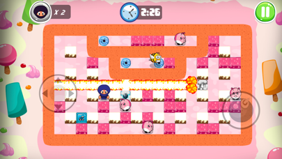 Screenshot from Ninja Boy Adventures - Bomberman edition