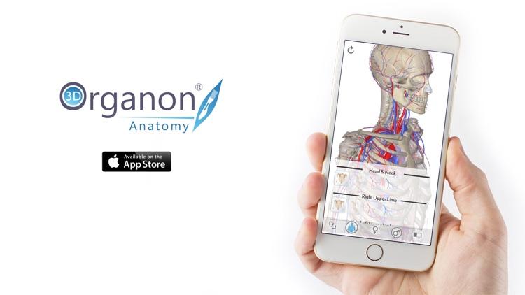 3D Organon Anatomy - Heart, Arteries, and Veins screenshot-3