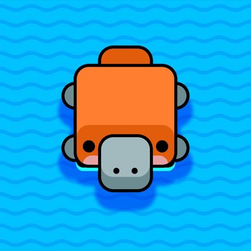 Square Turtle Swim
