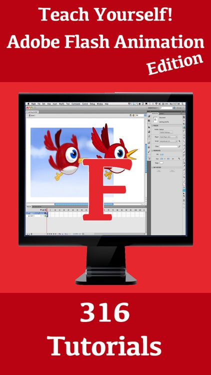 Teach Yourself! Adobe Flash Animation Edition