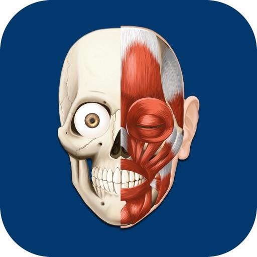 Baixar HiDoctor Atlas de Anatomia do Corpo Humano para iOS