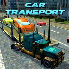 Activities of Car Transport Trailer Truck 4D