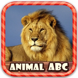 Children Know Animal Picture ABC