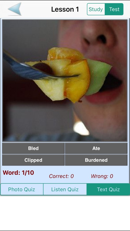 English Grammar With Photos (Learning & Practice) screenshot-3
