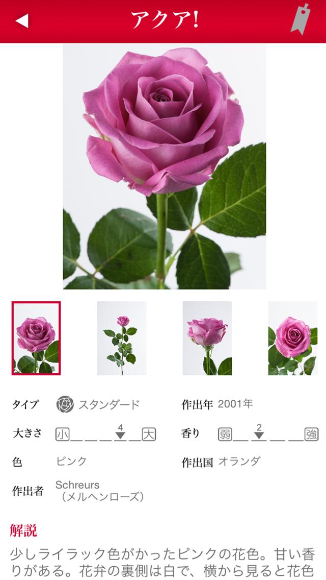 切り花 バラ図鑑 1000のおすすめ画像1