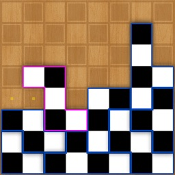 Puzzle of Chess Board