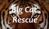Big Cat Rescue for TV