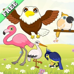 Flying Birds Match Games for Toddlers and Kids : discover the bird species ! FREE app