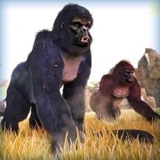 Activities of Gorilla Monkey Running Adventure Game For Free