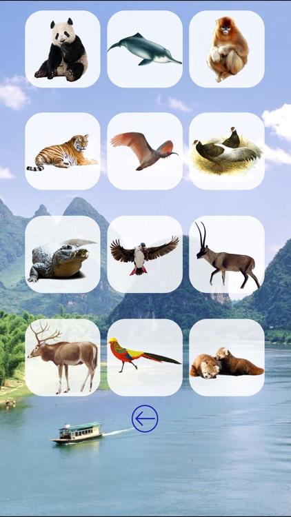 Animals China screenshot-3