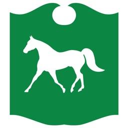 Town & Country Bank Utah for iPad