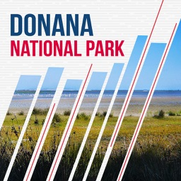 Donana National Park Travel Guide