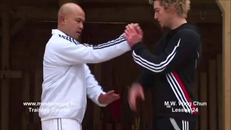 Teach Yourself Wing Chun Skills screenshot-4