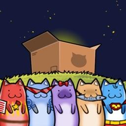Meow & Box