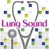 肺の聴診トレーニング - 見える肺音