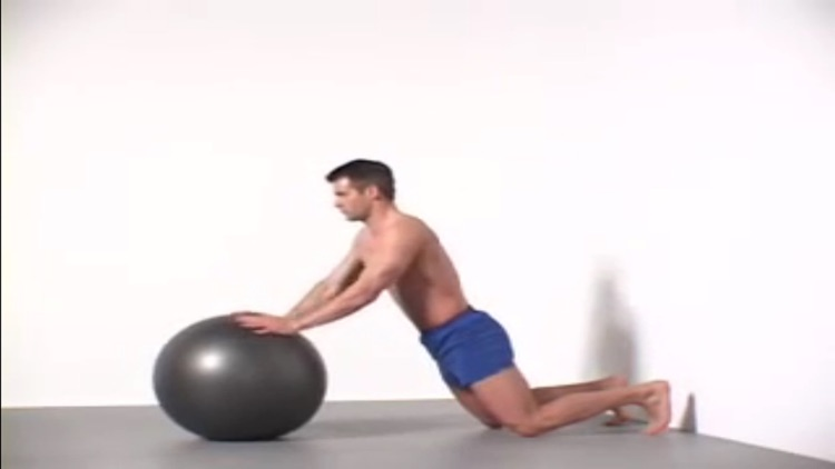 Gym Ball 2016 screenshot-3