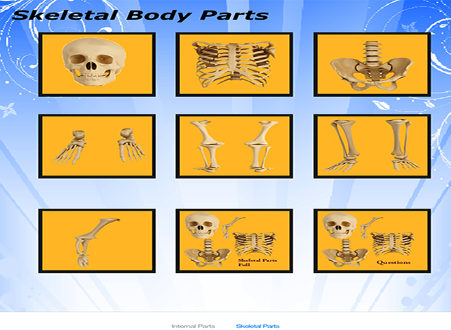 ‎Body Parts - Internal Screenshot
