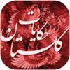 Amir Hessam Haidari Adli - حکایات گلستان artwork