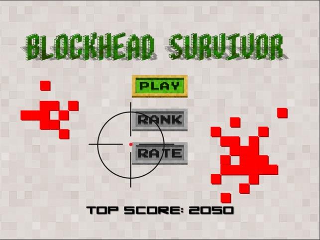Blockhead Survivor, game for IOS