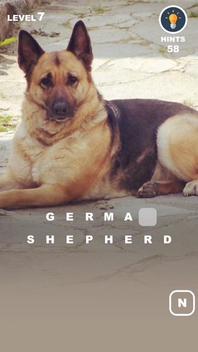 Dog Genius – photo trivia with puppies in makeup Screenshot