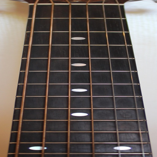 Guitar Fretboard Addict