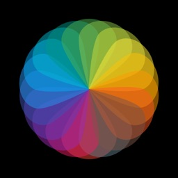 Material  Color Palette